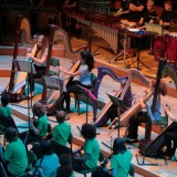 Harp-ensemble